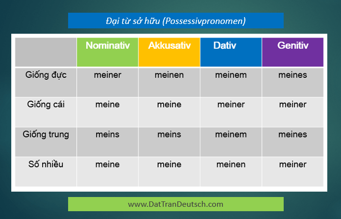 Tiếng Đức cơ bản - Bảng đại từ sở hữu